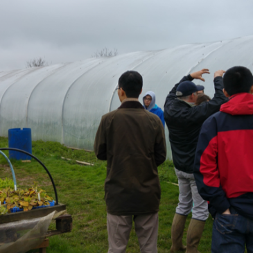 University of Warwick Field Trip to Abbey Home Farm – Cirencester