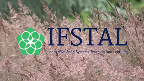 Training Future Actors in the Food System