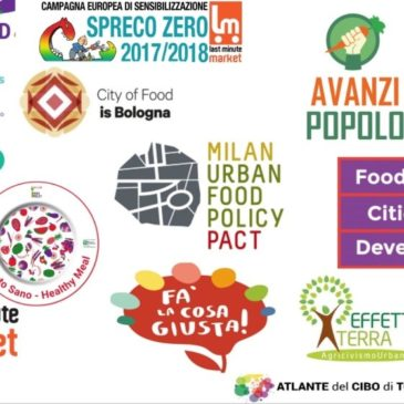 National Cooperation Between Cities on Urban Food Policies: the tale of an unexpected dissertation journey